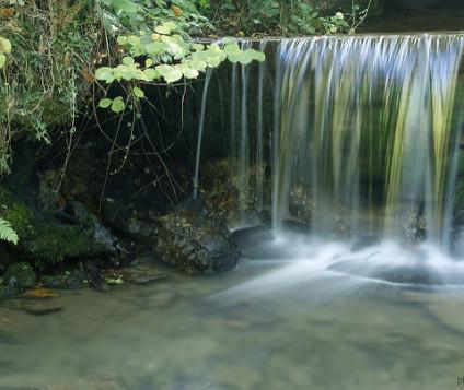 3 octubre 2009 Cerca de Villandio, Asturias