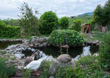 Castilla y León lanza su Central de Reservas de Turismo Rural