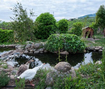 turismo-rural-castilla-leon
