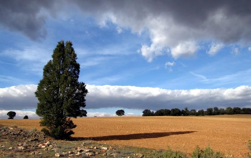 Campo de Montiel quiere ser Patrimonio de la Humanidad