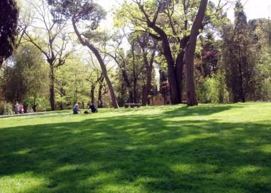 Ecologistas en acción organiza una ruta por el Parque Regional de Pinto