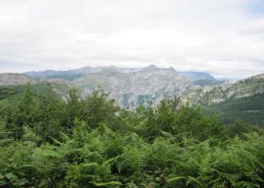 La candidatura de Ponga para formar parte de la Reserva de la Biosfera