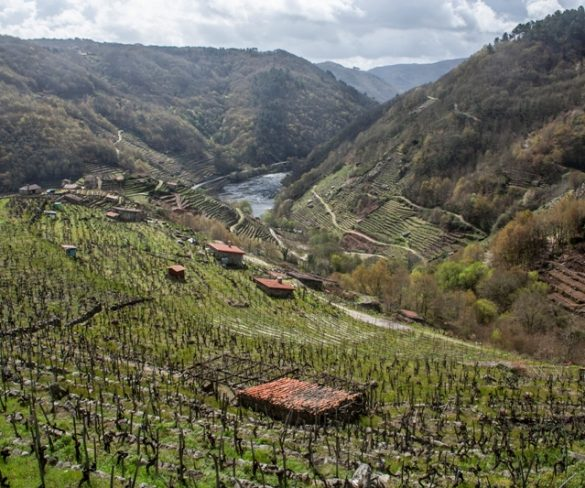 Ourense y su ocupación en Semana Santa