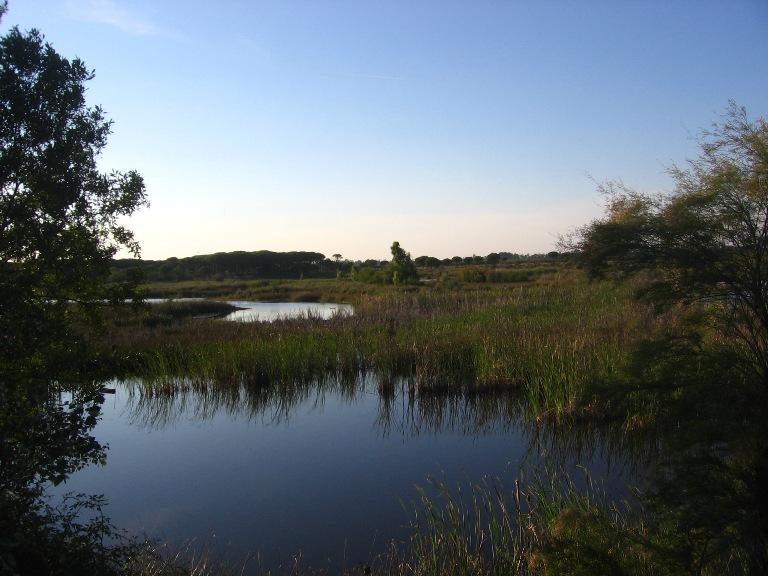 parque nacional de donana