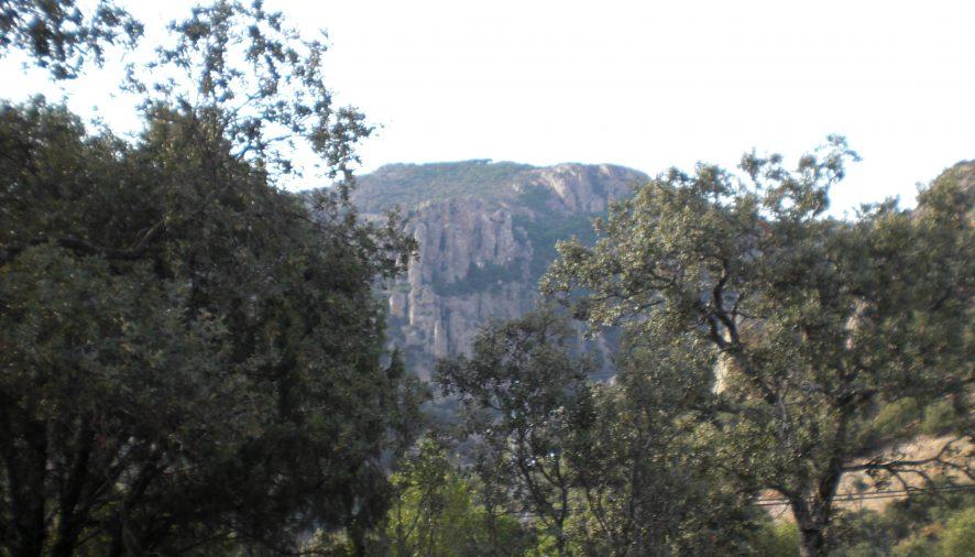 Sierra  Morena, a un paso de ser Parque Natural