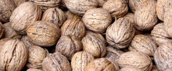 Las nueces DO de Nerpio se dan a conocer en la Casa de Castilla- La Mancha - gastronomia-restaurantes